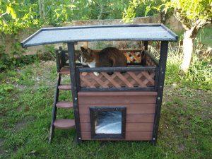 Katze im Outdoor Katzenhaus von Kerbl