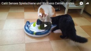 Catit Senses Wellness Center Video mit Katzen