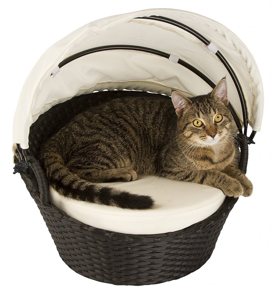 Katze auf Kerbl Katzenlounge Chillout
